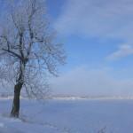 Winterzauber – eine Fotoserie