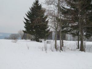 Eigentum verpflichtet – Stiftung Naturschutz saniert bald ehemalige Grenzanlage