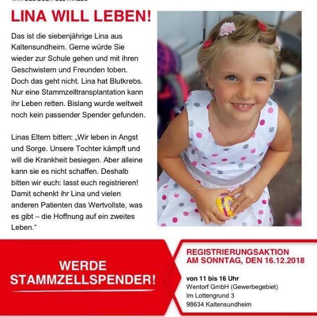Lina will leben! Werde Stammzellenspender – Registrierung am 16.12.2018 in Kaltensundheim